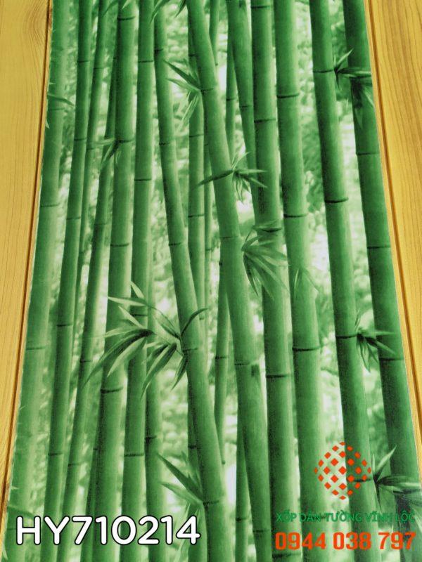 PVC Dán Tường 45cm x 10m MS HY710214